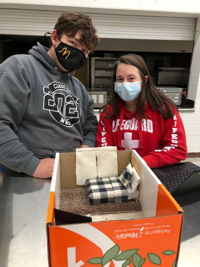 Mrs. Schmitt's Housing & Interior Design Class applied what they have learned about Elements of Design: line, form, space, mass, texture, and color.   The students used: fabric, wall paper, paint samples, carpet samples, tile samples, and Leggos to design Shoe Box Bedrooms then explained each Element of Design to complete their assignment.