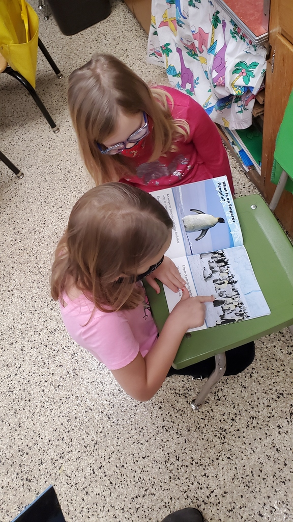 First graders are exploring nonfiction books, making observations, and asking questions to kick off a new penguin unit!