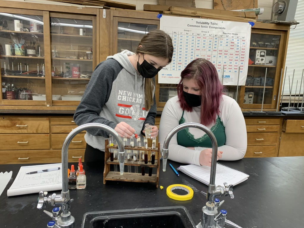 Advanced chemistry students with Mr. Pemble were experiment with chemical reactions and their effects on equilibrium. Recording results in lab notes.