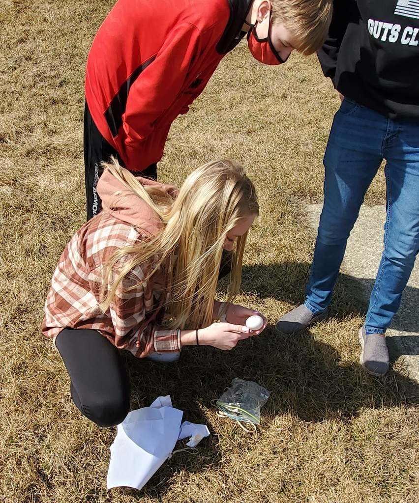 Egg Drop Action Shots